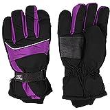 HIROMARUjp 防水 防風 グローブ 手袋 スノーボード スキー バイク 男 女 兼用 紫 パープル