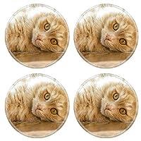 Luxlady天然ゴムラウンドコースターイメージID : 34702997BrunchのRipe Tangerines、チェック模様のLienen木製のテーブル UFAEAKaY3A_PLAYING CAT ON WOOD _607
