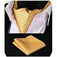 HISDERN Men's Cravat Self Ascot Tie Polka Dot Jacquard Woven Neckerchief Gift Cravat Tie and Pocket Square Set Formal Scarf Ties for Men