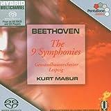Nine Symphonies (Hybr)