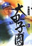大甲子園―The best games of great koshien (3)