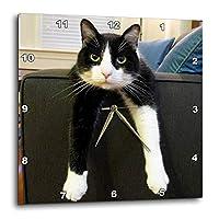 3dRose dpp_23450_3 黒と白の猫 ナッシング・トゥ・ドー壁時計、15×15インチ