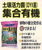 土壌活力菌(OYK菌)集合有機