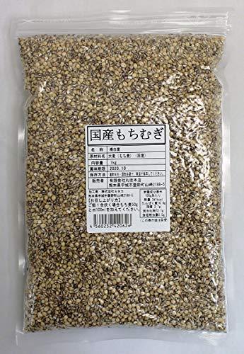 国産もち麦 1kg もちむぎ 国産 ダイシモチ 大麦