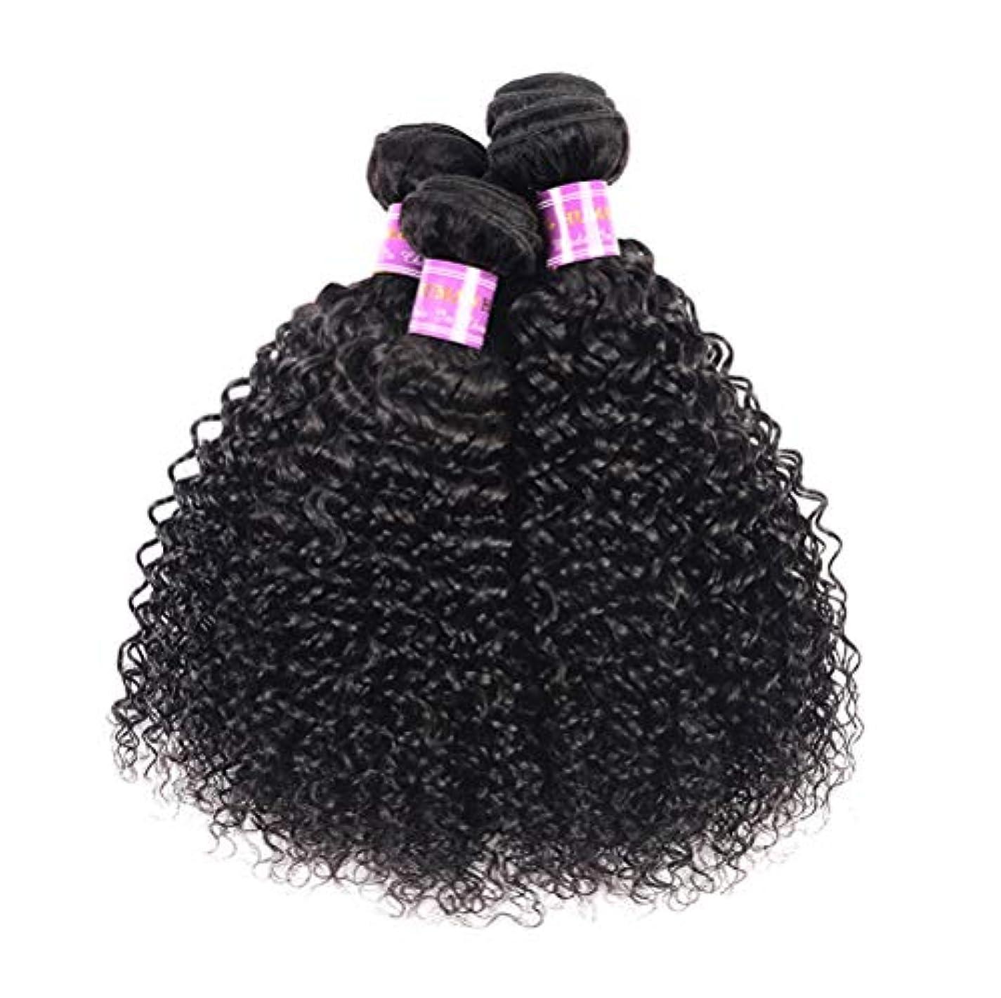 盆乳製品ウッズ髪織り8a変態カーリーヘアー1バンドル人間の髪織り未処理ブラジルレミーバージンレミー髪