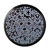 Amazon.co.jp1枚 ひまわり花パターンイメージプレート スタンピングプレートネイルアート #hehe-081 [並行輸入品]