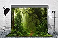 LB写真背景カスタマイズ写真バックドロップStudio Prop