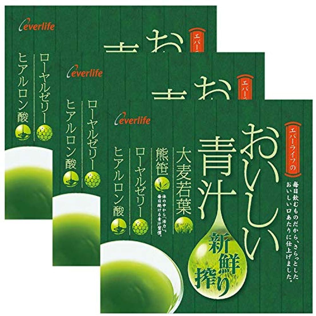 ピケメールを書くイチゴエバーライフ おいしい青汁 新鮮搾り 30包×3箱セット