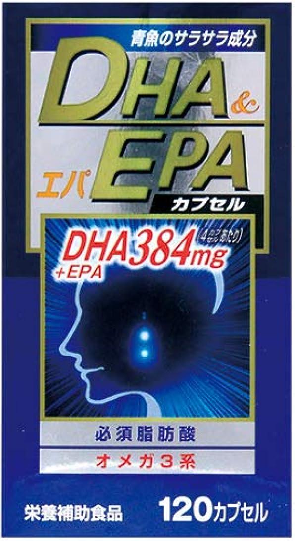 摩擦チーフ確立DHAエパスーパー32 120球×(3セット)