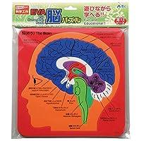 日用品 おもちゃ (まとめ)EVA脳パズル 【×30セット】