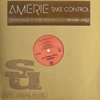 Take Control [12 inch Analog]
