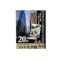 EP32455 フォト光沢紙 A4 20枚 PA-PPM-H/20