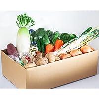 おまかせ野菜13種+おまけ付きセット