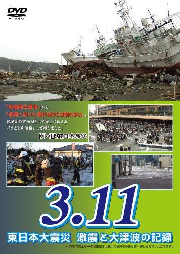 3.11 東日本大震災 激震と大津波の記録 [DVD] -