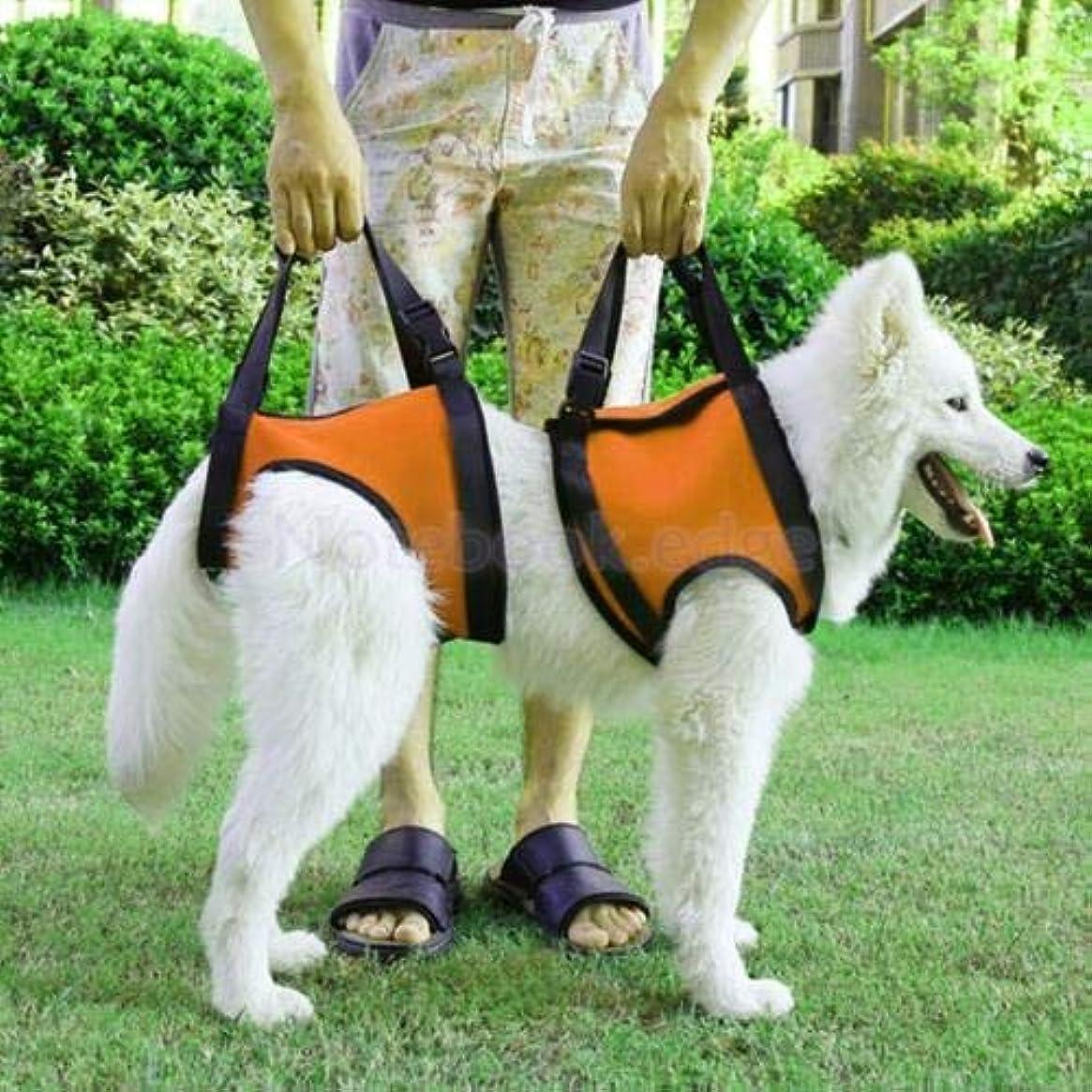 洗う規制スイス人FidgetGear Rehabilitation Sling Support Dog Lift Harness Set w/Handle for Sick Old Pet Aid Orange L