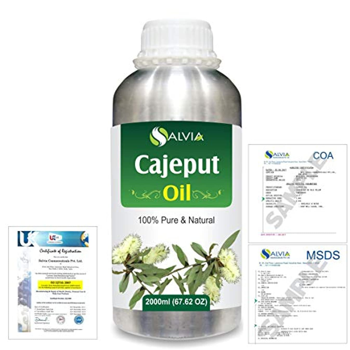 翻訳者平行レクリエーションCajeput (Melaleuca leucadendron) 100% Natural Pure Essential Oil 2000ml/67 fl.oz.