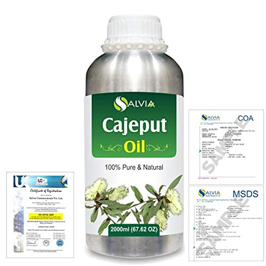 基礎させる浅いCajeput (Melaleuca leucadendron) 100% Natural Pure Essential Oil 2000ml/67 fl.oz.
