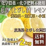 【クール便無料・規格外加工用】広島(とびしま) レモン 2kg 農薬不使用 (広島県 とびしま農園)