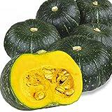 国華園 北海道産他 かぼちゃ 10kg1箱