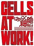 はたらく細胞 6(完全生産限定版)[DVD]