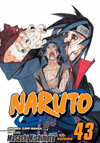Naruto, Vol  43: The Man with the Truth (Naruto Graphic