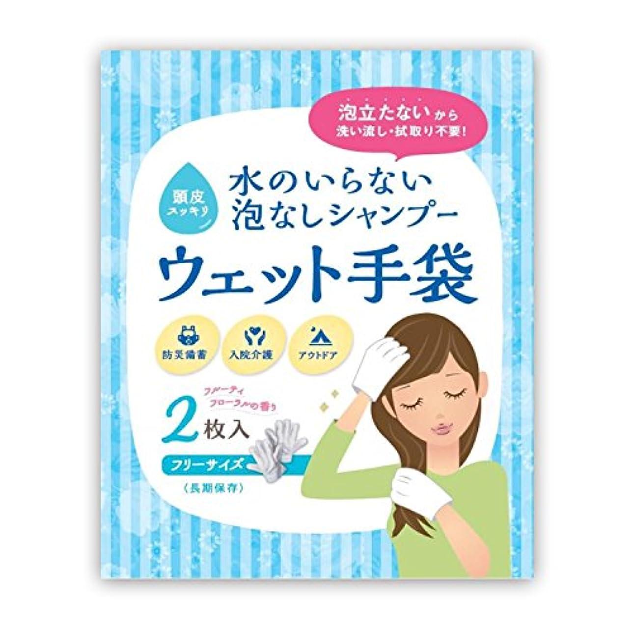薬局取り壊す楽しい水のいらない泡なしシャンプー ウェット手袋(2枚入)