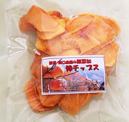 無添加 柿チップス100g 入×5袋(群馬産)