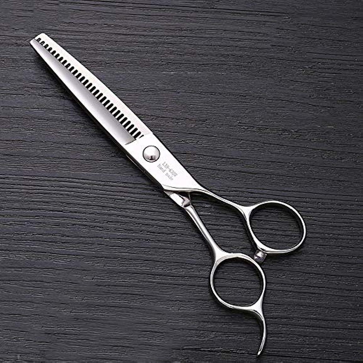 不倫検索エンジンマーケティング啓発する6インチステンレススチールハイエンドプロフェッショナル理髪はさみ ヘアケア (色 : Silver)