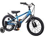 アイデス (ides) D-bikemaster (ディーバイクマスター) 18インチ 子ども用 キッズ 自転車 幼児車 BMXタイヤ 簡単着脱 1本スタンド+補助車付きモデル シアン シアン 18インチ