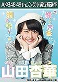 【山田杏華 AKB48 チーム8】 AKB48 願いごとの持ち腐れ 劇場盤 特典 49thシングル 選抜総選挙 ポスター風 生写真