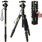 [Rangers] デジタルカメラ 一眼レフカメラ Canon Nikon Petax Sonyなど用 超軽量 カーボンファイバー製 5段 三脚・一脚可変式&ボールヘッド雲台 水準器付き ブライトシアン RA013
