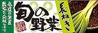 長ねぎ パネル No.61222(受注生産)
