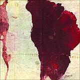 Like Drawing Blood [解説・歌詞対訳付 / ボーナストラック収録 / スーパー・プライス国内盤] (BRC197X)