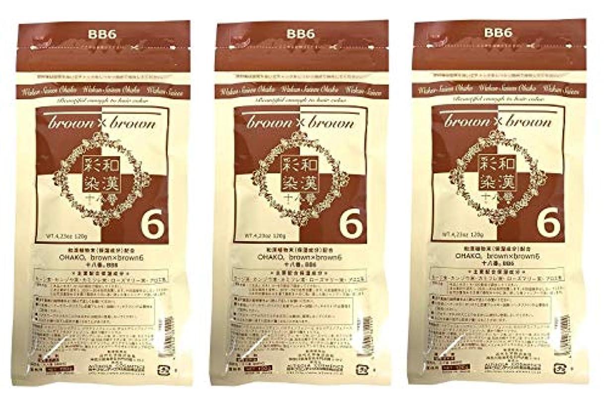 【3個セット】グランデックス 和漢彩染 十八番 120g BB6