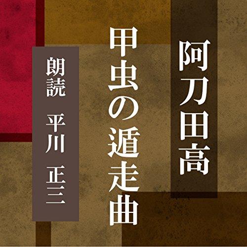 甲虫の遁走曲   阿刀田 高