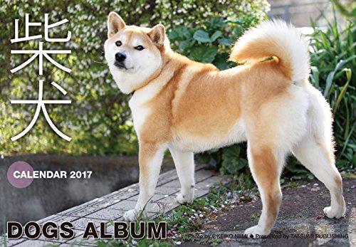 2017カレンダー ドッグズアルバム「柴犬」 ([カレンダー])