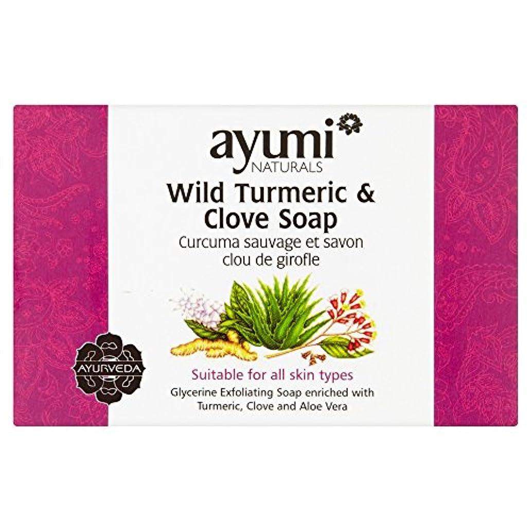バイオリニスト書士まっすぐにするAyumi Turmeric & Clove Soap 100g