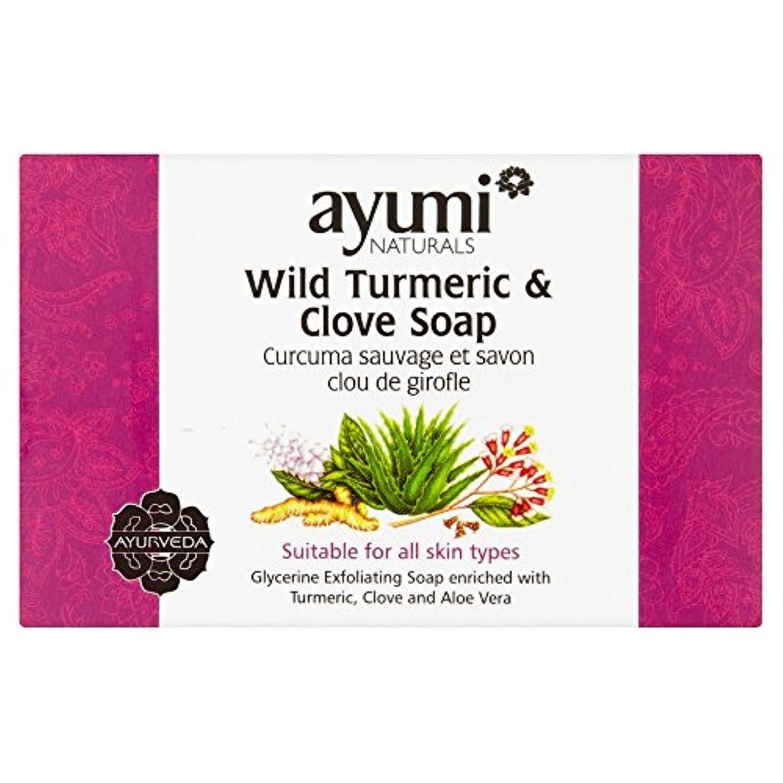 不利病な決してAyumi Turmeric & Clove Soap 100g
