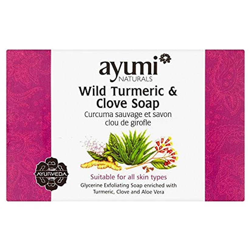 建物バー市民Ayumi Turmeric & Clove Soap 100g