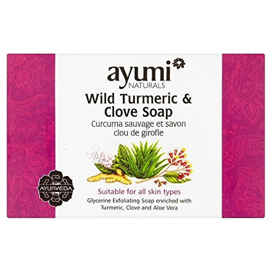 石炭郊外悪名高いAyumi Turmeric & Clove Soap 100g
