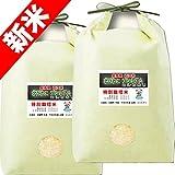 29年産 新米 特別栽培米 北びわこ プレミアム コシヒカリ10kg (5kg×2袋) 滋賀県産 近江米 (7分づき 約4.65kg×2袋でお届け)