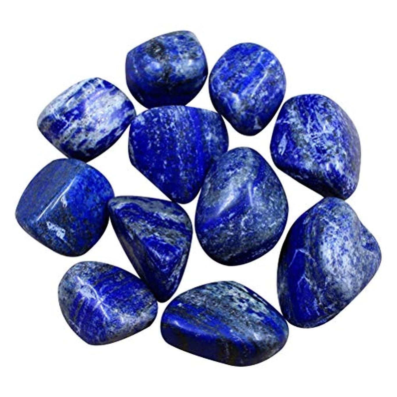 バッフルパンフェザーSUPVOX 10個の天然石石落ち石の癒しReikiクリスタルジュエリー自然の岩ホームデコレーション花瓶植物を作る