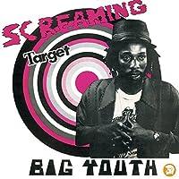 Screaming Target [12 inch Analog]