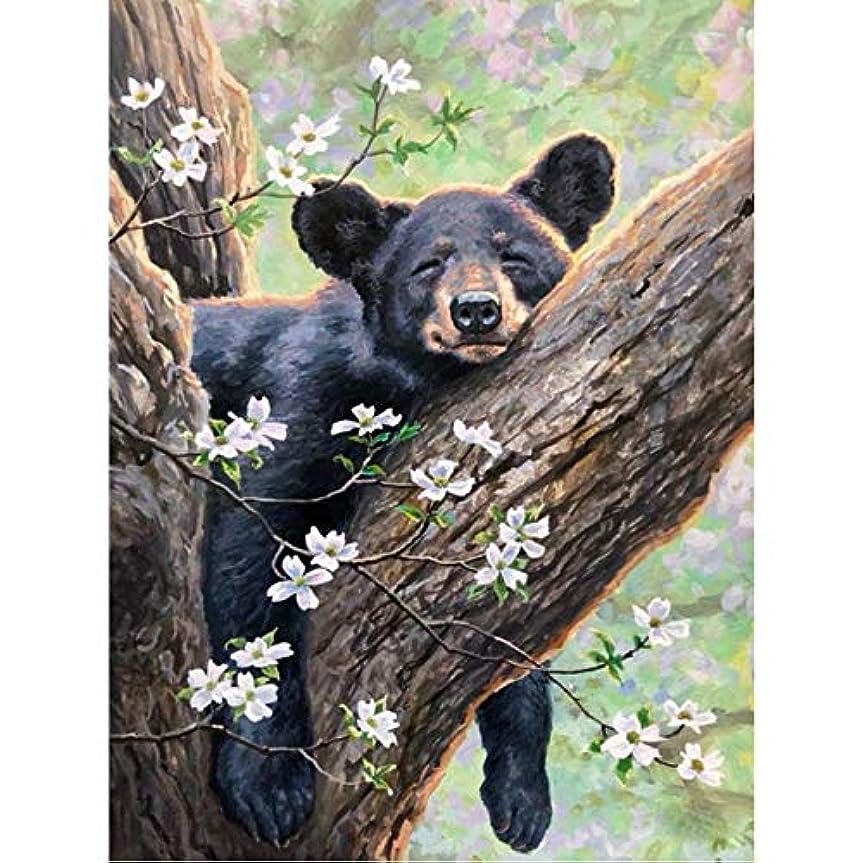 悪意のある花火発見DIY 数による絵画 デジタル油絵動物クマの写真家の装飾ユニークなギフト-40*50cm