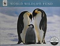 WWFペンギンW /赤ちゃんクリスマスカードボックスの20