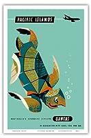 太平洋諸島 - カンタス航空 - アオウミガメ - ビンテージなハワイの旅行のポスター によって作成された ハリー・ロジャース c.1960s - アートポスター - 31cm x 46cm