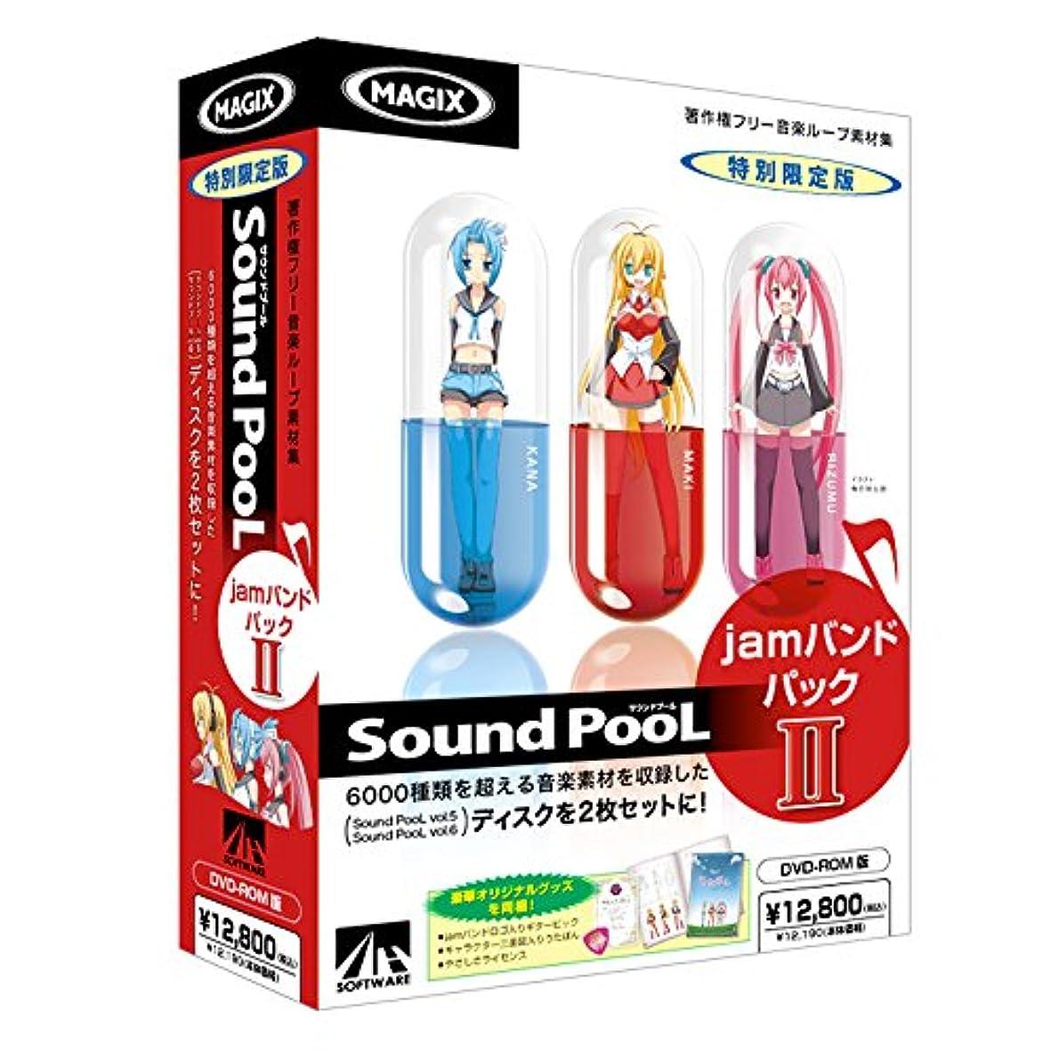 オーラル病んでいる間接的Sound PooL jamバンドパック II