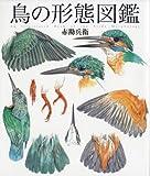 鳥の形態図鑑 (細密画シリーズ)