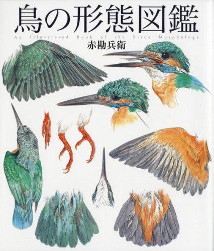 鳥の形態図鑑 (細密画シリーズ)の詳細を見る