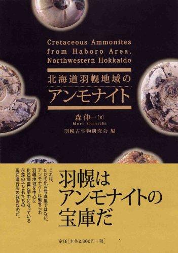 北海道羽幌地域のアンモナイト  Cretaceous ammonites from Haboro area, Northwestern Hokkaido